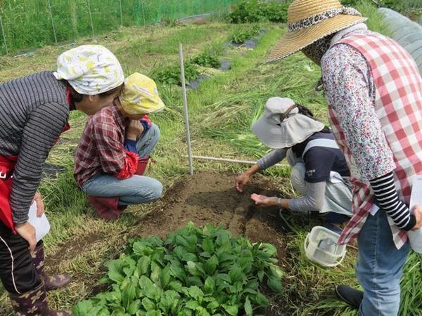 播種の方法を確認する部員