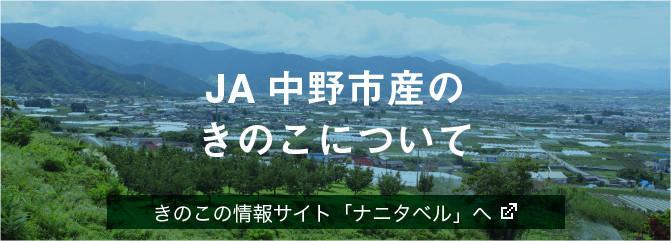JA中野市産 「きのこ」について